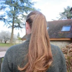 Cheveux de gaulois 1