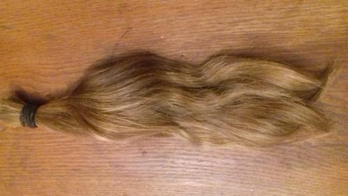 cheveux1bis